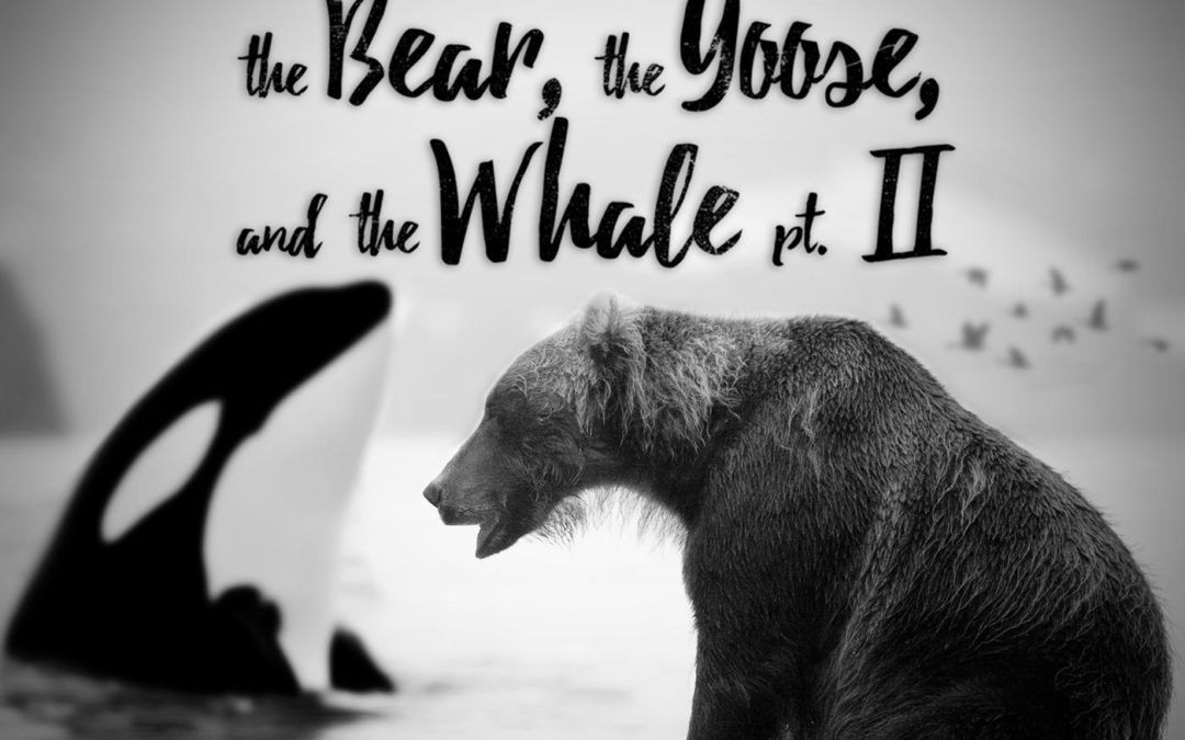 The Bear, The Goose and The Whale (Part 2)